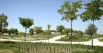 Valdemingómez Forest Park