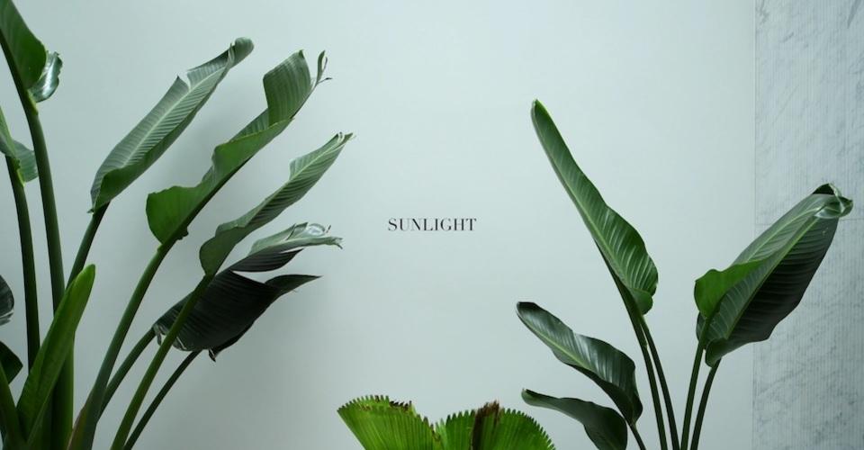 Sunlight cover 960